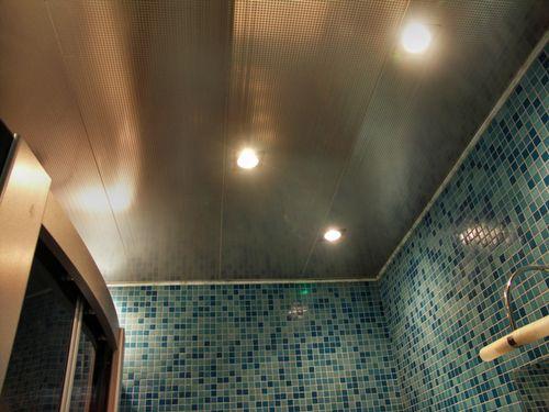 Реечный потолок Албес для ванных комнат и других помещений ...
